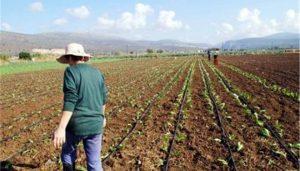 Οικονομικές ενισχύσεις σε 2.748 αγρότες