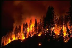 Ανεξέλεγκτη η πυρκαγιά στους Θρακομακεδόνες