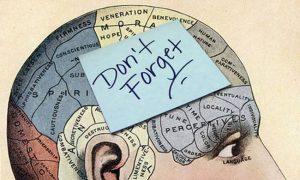 Με την κατάλληλη εκπαίδευση μπορείς να αποκτήσεις σούπερ-μνήμη